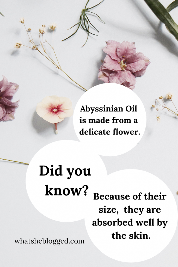 Did you know?-2